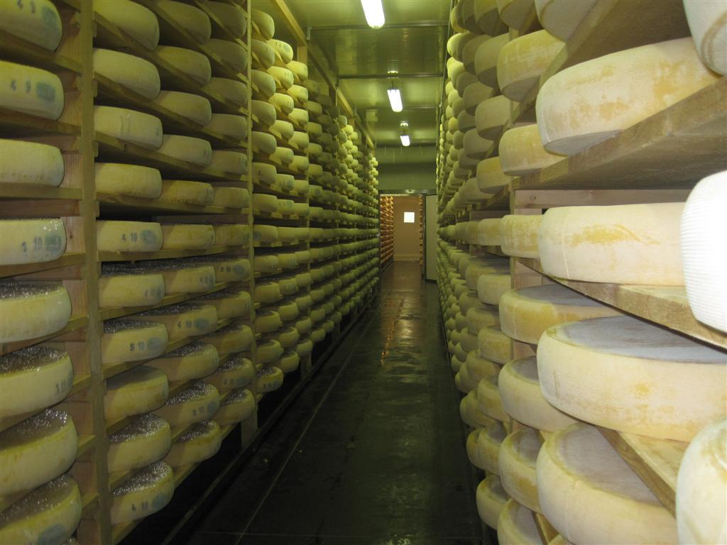 Cave pour le comt cave pour morbier cave fromage froid industriel jura - Cave affinage fromage electrique ...